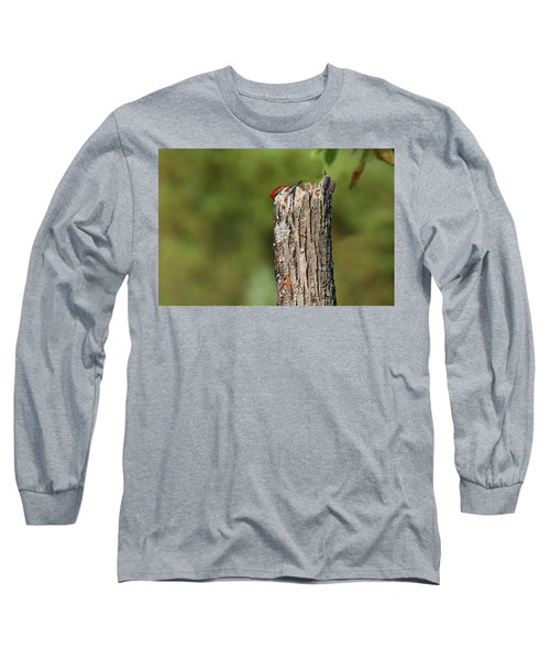 Peek A Boo Pileated Woodpecker Long Sleeve T-Shirt