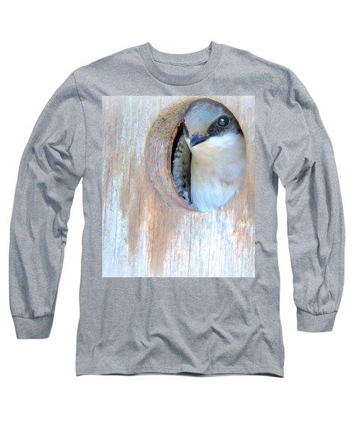 Peek Of Blue  Long Sleeve T-Shirt