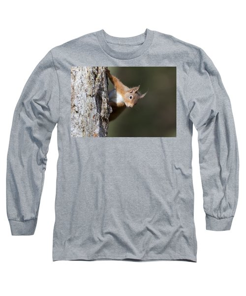 Long Sleeve T-Shirt featuring the photograph Peekaboo - Red Squirrel #29 by Karen Van Der Zijden