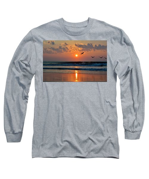 Pelicans On The Move Long Sleeve T-Shirt