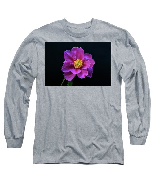 Peony - Beautiful Flowers And Decorative Foliage On The Right Is One Of The First Places Among The G Long Sleeve T-Shirt