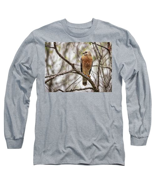 Perched Red Shouldered Hawk Long Sleeve T-Shirt