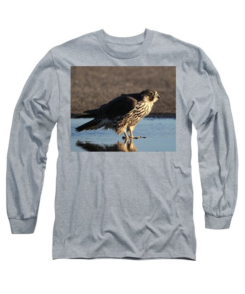 Peregrine Falcon Shirley New York Long Sleeve T-Shirt by Bob Savage