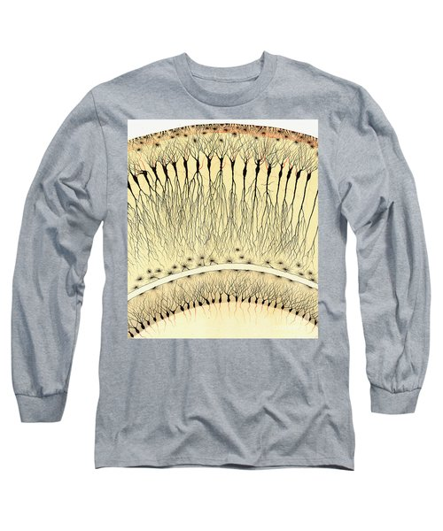 Pes Hipocampi Major Santiago Ramon Y Cajal Long Sleeve T-Shirt