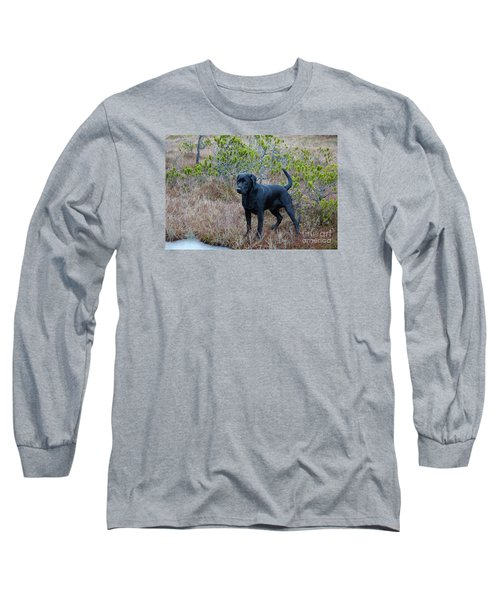 Pet Portrait - Radar Long Sleeve T-Shirt by Laura  Wong-Rose