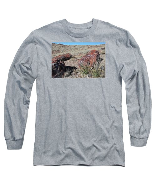 Petrified Afternoon Long Sleeve T-Shirt by Gary Kaylor