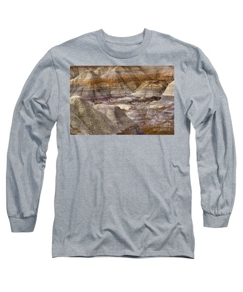 Petrified Forest National Park 4 Long Sleeve T-Shirt