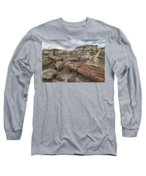 Petrified Remains Long Sleeve T-Shirt by Alan Toepfer