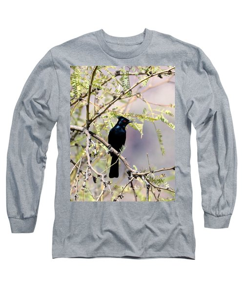 Phainopepla Black Cardinal Long Sleeve T-Shirt