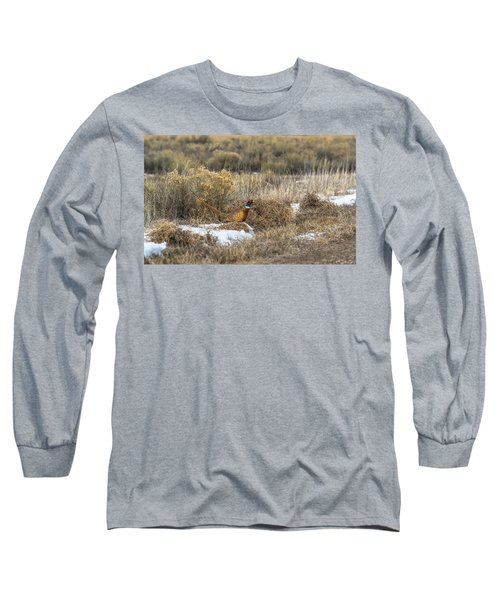 Pheasant Glory Long Sleeve T-Shirt