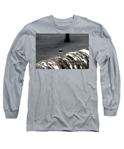 Pied Wagtail Long Sleeve T-Shirt