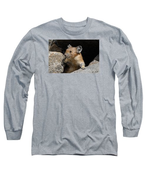 Pika Looking Out From Its Burrow Long Sleeve T-Shirt
