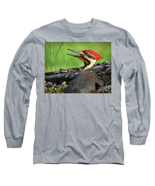 Pileated Long Sleeve T-Shirt by Douglas Stucky