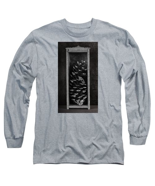 Pine Cone In A Box Still Life Long Sleeve T-Shirt