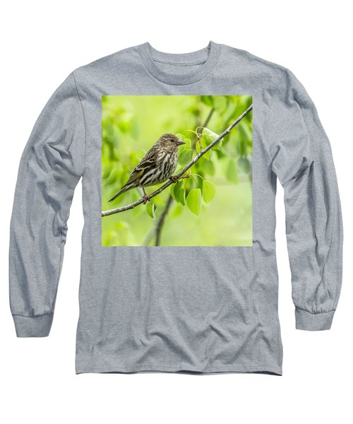 Pine Siskin On A Branch Long Sleeve T-Shirt
