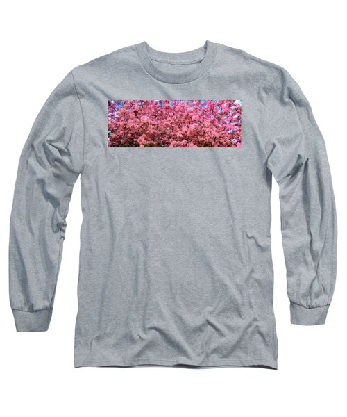 Pink Blossoms Of Spring Long Sleeve T-Shirt