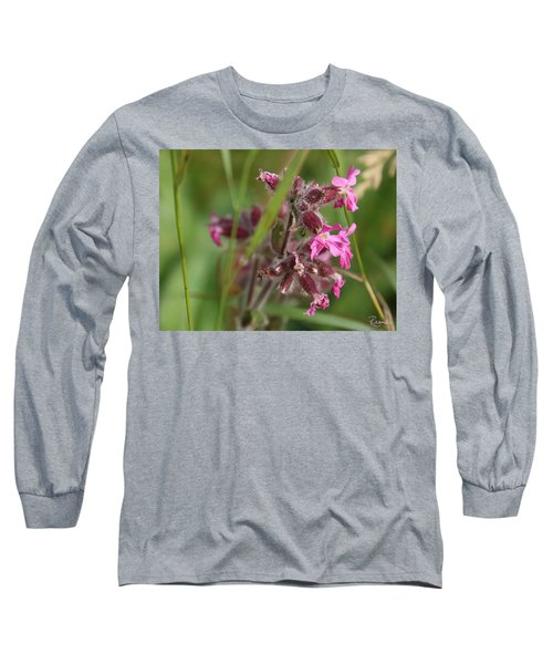 Pink Campion In August Long Sleeve T-Shirt