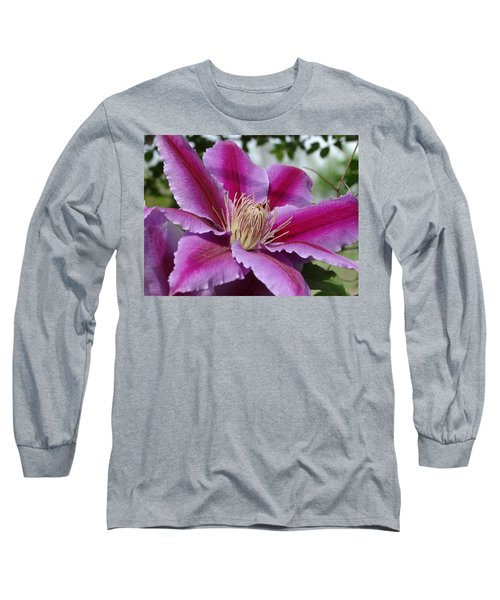 Pink Clematis Vine Long Sleeve T-Shirt by Rebecca Overton