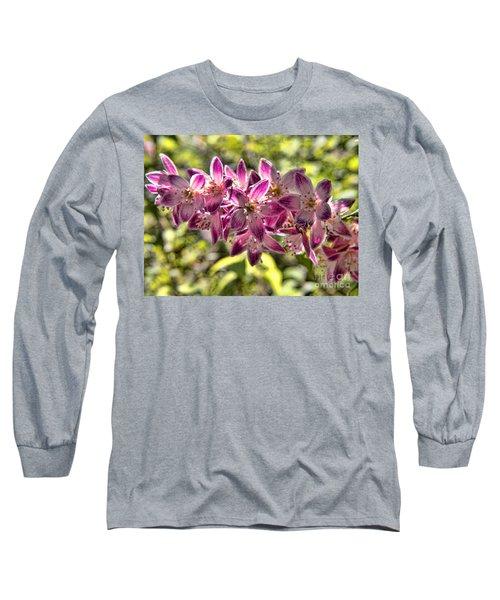 Pink Ladies In Spring Glory Long Sleeve T-Shirt