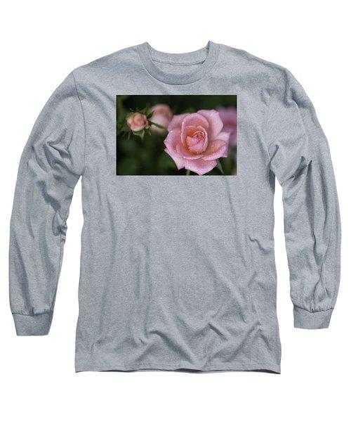 Pink Miniature Roses 3 Long Sleeve T-Shirt