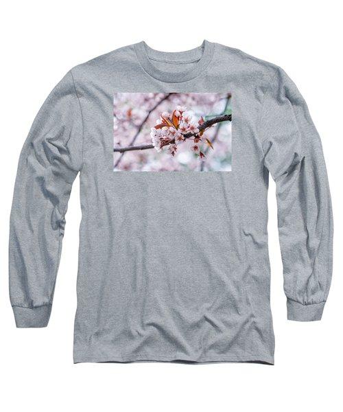 Long Sleeve T-Shirt featuring the photograph Pink Sakura Cherry Blossom by Alexander Senin