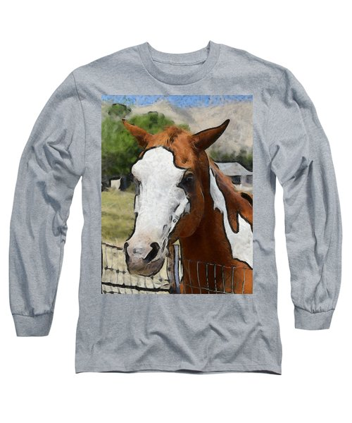 Long Sleeve T-Shirt featuring the photograph Pinto In The Pasture Portrait  by Barbara Snyder