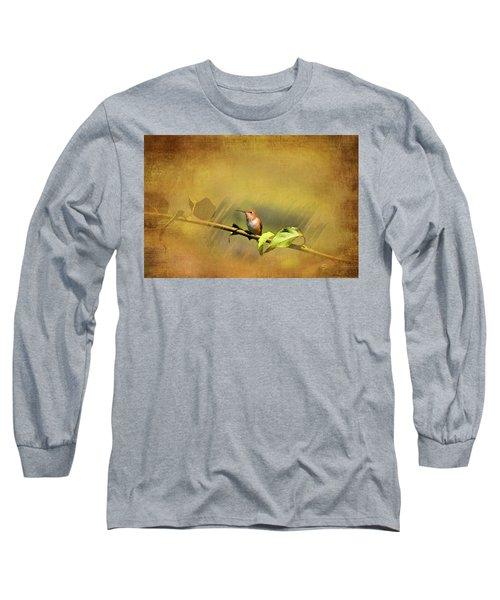 Plate 112 - Hummingbird Grunge Series Long Sleeve T-Shirt