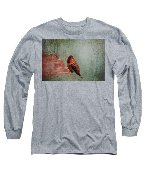 Plate 164 - Hummingbird Grunge Series Long Sleeve T-Shirt