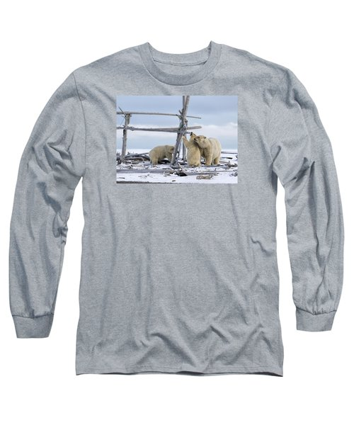 Playtime In The Arctic Long Sleeve T-Shirt