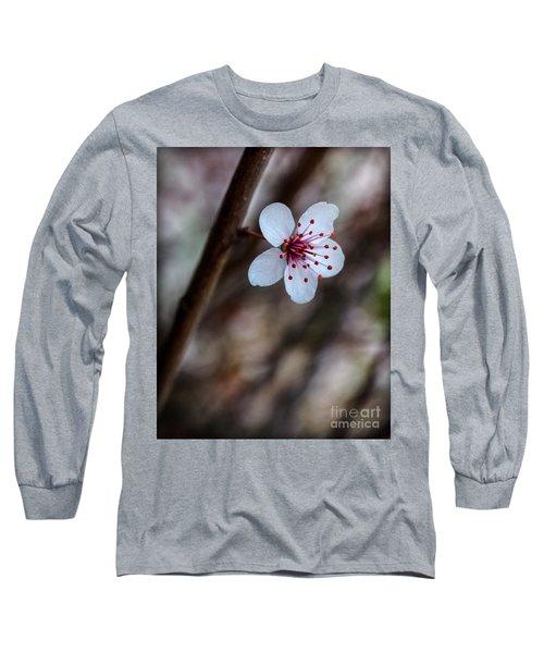 Plum Flower Long Sleeve T-Shirt