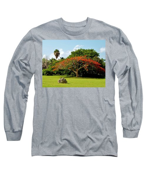 Poinciana Long Sleeve T-Shirt by Amar Sheow