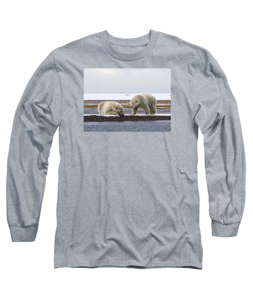 Polar Bear Zzzzzzz's Long Sleeve T-Shirt