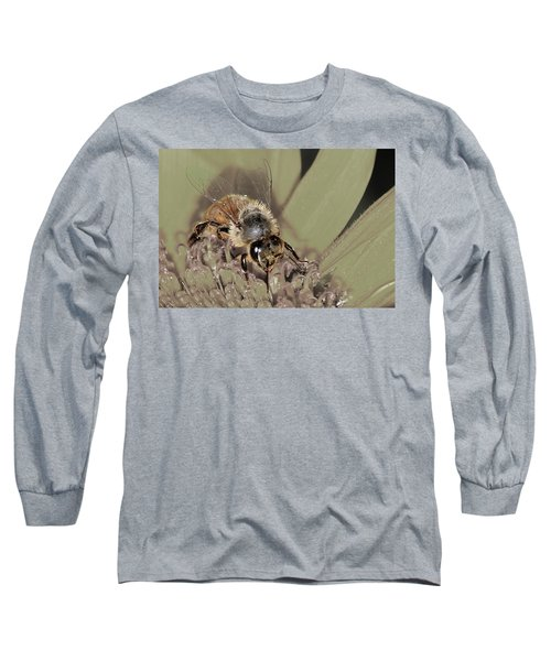 Pollinating Bee Long Sleeve T-Shirt