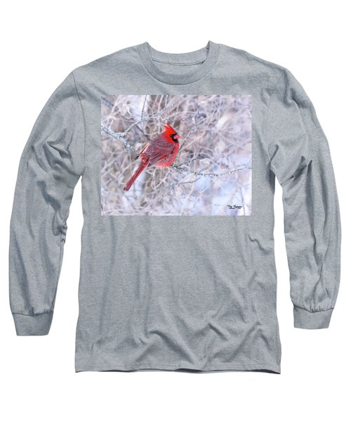 Pop Of Color Long Sleeve T-Shirt