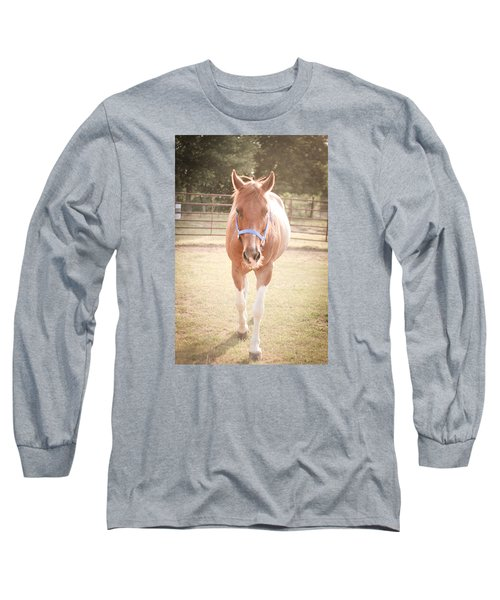 Long Sleeve T-Shirt featuring the photograph Portrait Of A Light Brown Horse In A Pasture by Kelly Hazel