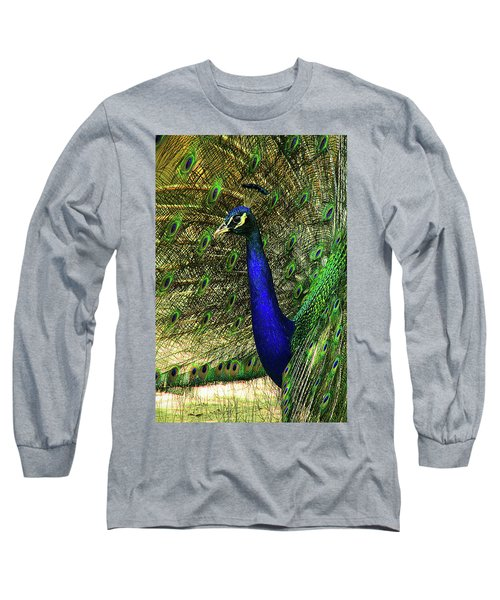 Long Sleeve T-Shirt featuring the photograph Portrait Of A Peacock by Jessica Brawley