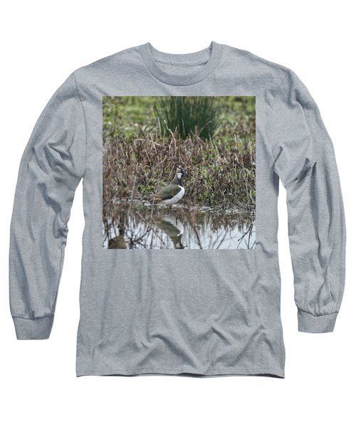 Portrait Of Beautiful Lapwing Bird Seen Through Reeds On Side Of Long Sleeve T-Shirt by Matthew Gibson