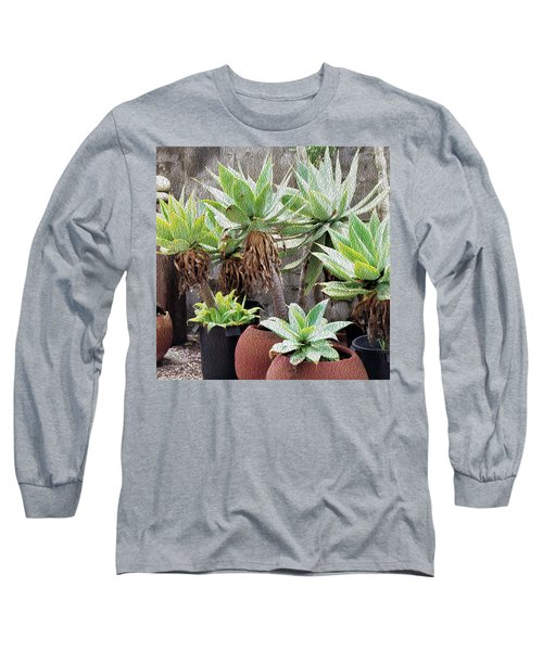 Potted Agave Plants Long Sleeve T-Shirt