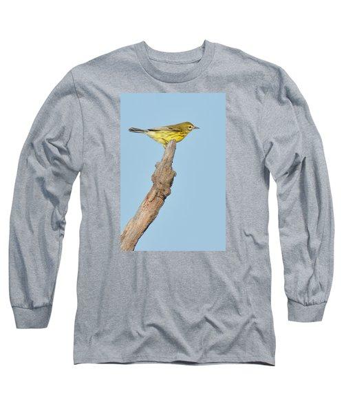 Prairie Warbler On Perch Long Sleeve T-Shirt by Alan Lenk