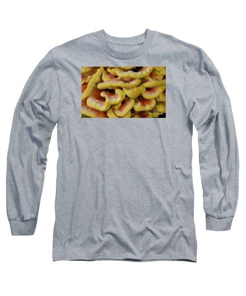 Pretty Chicken Long Sleeve T-Shirt
