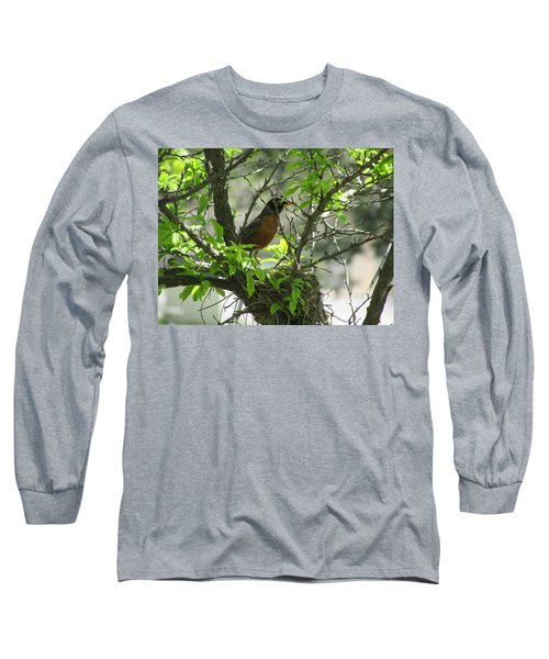 Protecting The Nest Long Sleeve T-Shirt