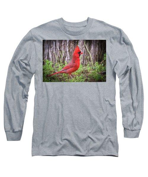 Proud Cardinal Long Sleeve T-Shirt