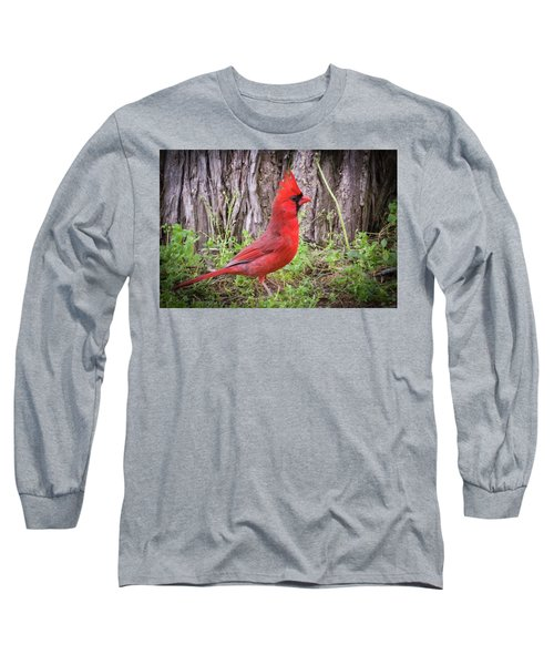 Proud Cardinal Long Sleeve T-Shirt
