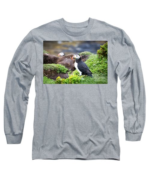 Puffin  Long Sleeve T-Shirt by Jane Rix