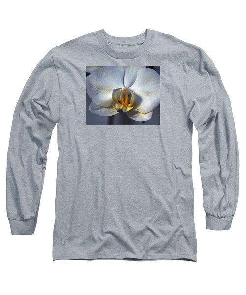 Long Sleeve T-Shirt featuring the photograph Pure Form And Color by Lynda Lehmann