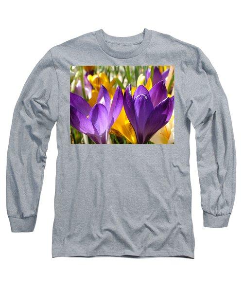 Purple Crocuses Long Sleeve T-Shirt