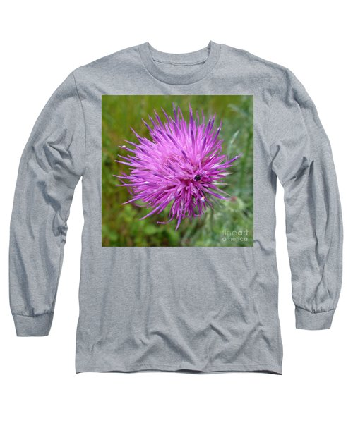 Purple Dandelions 2 Long Sleeve T-Shirt by Jean Bernard Roussilhe