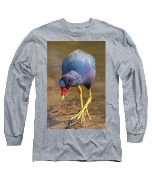 Purple Gallinule Bigfoot Long Sleeve T-Shirt