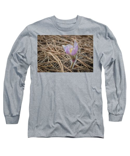 Purple In The Pine Long Sleeve T-Shirt