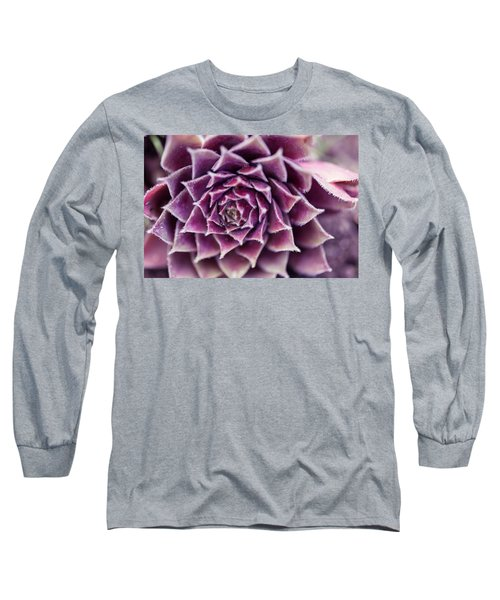 Purple Succulent Plant Blossom In Summer Long Sleeve T-Shirt by Jingjits Photography